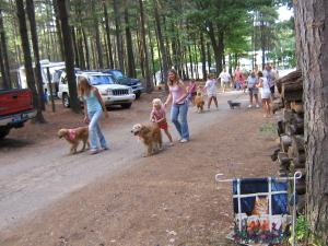 Holiday Camping Resort holiday-camping-resort-pet-parade