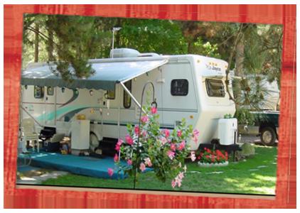 Holiday Camping Resort home